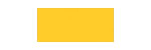 everest-gold-logo-300x100